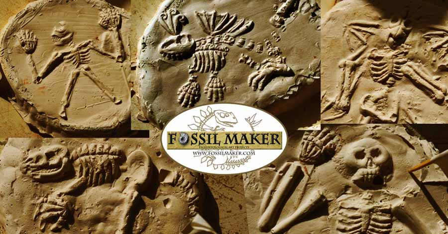 Fossilmaker at New Eccles Hall School