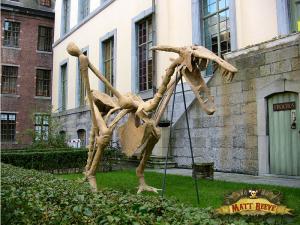 Winged Dragon Skeleton