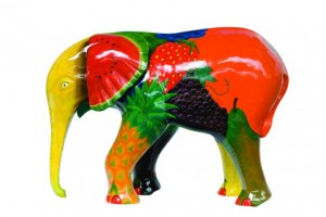 Feeling Fruity GoElephant