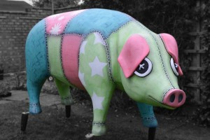 Little Sown Sow Pigs Gone Wild